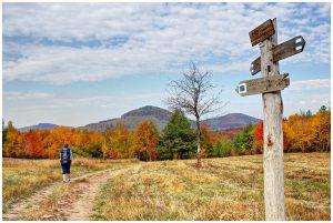 Kéktúrát járó turista a zempléni Zsidó-rét iránymutató táblájánál az őszi tájban
